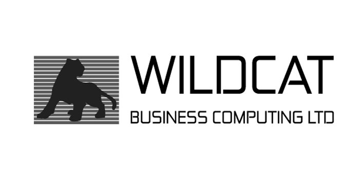 wildcat business computing