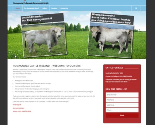 Romagnola Ireland Website